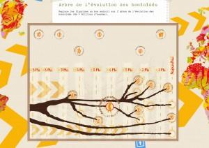 Jeu: l'arbre des hominidés