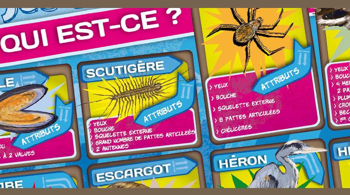 """Plateau du jeu """"Qui est-ce ?"""" de la malle pédagogique les animaux en boite. Fragment 1."""