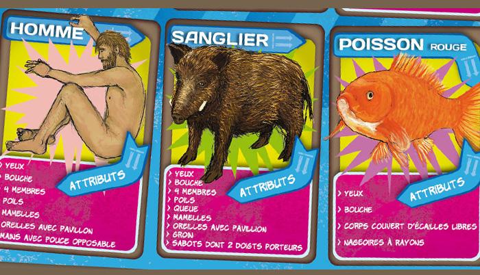 """Plateau du jeu """"Qui est-ce ?"""" de la malle pédagogique les animaux en boite. Fragment 2."""