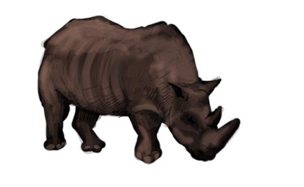 DecouvPhosphat_10-rhino
