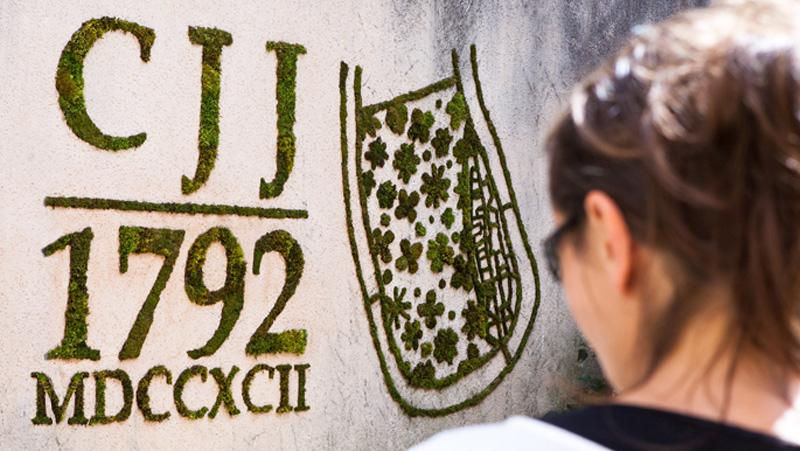Fresque végétale Green Tag Invasion - CAHORS JUIN JARDIN 2013