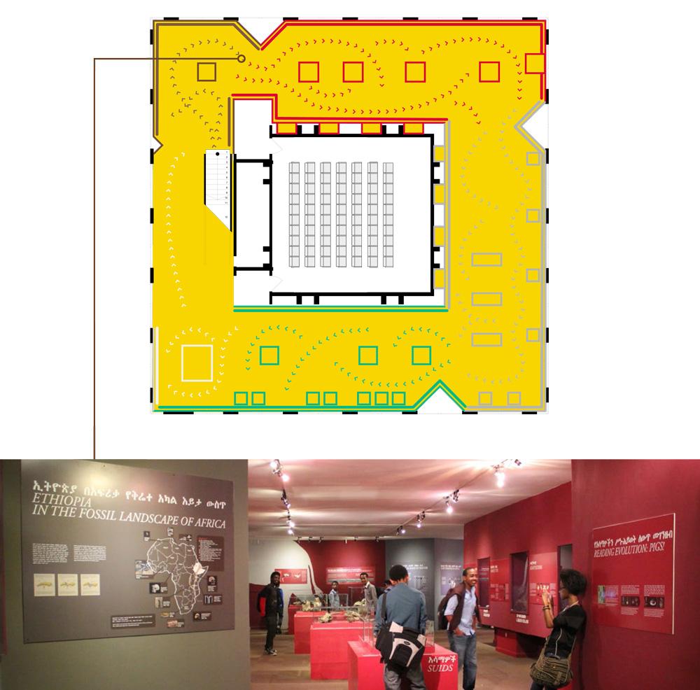 National Museum of Ethiopia, plan de la scénographie