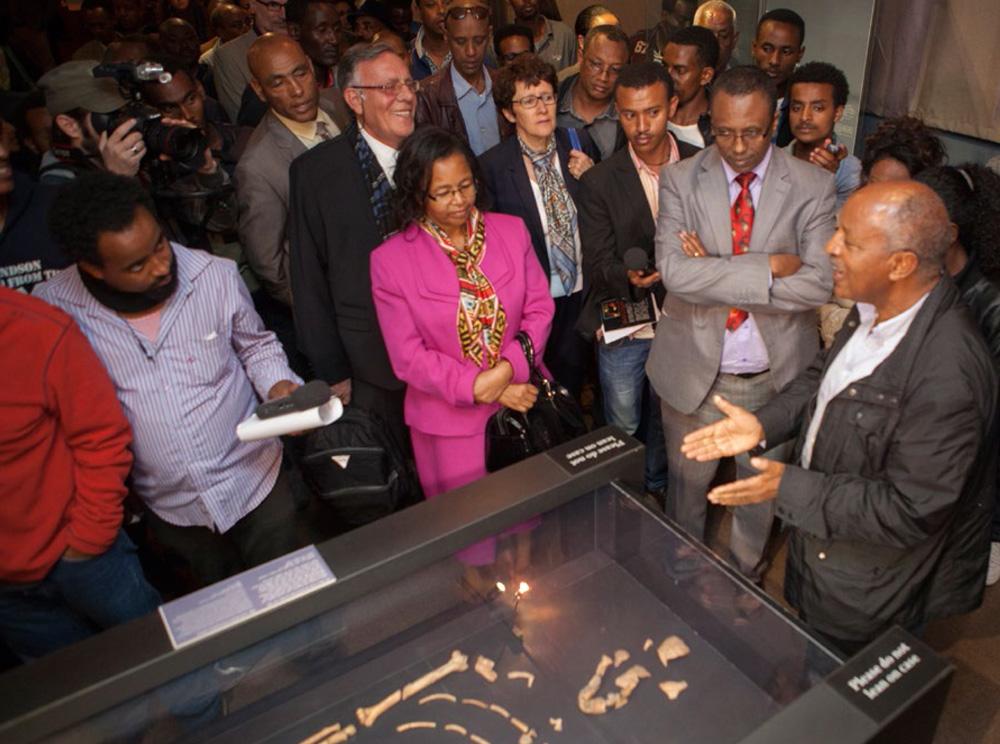 La galerie de paléontologie et de préhistoire du musée national d'Éthiopie a été inaugurée le 3 décembre 2014.