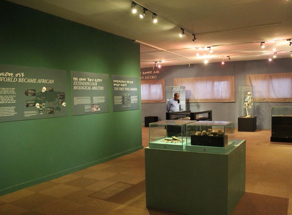 panneaux en vis-à-vis de La chronologie des hominidés