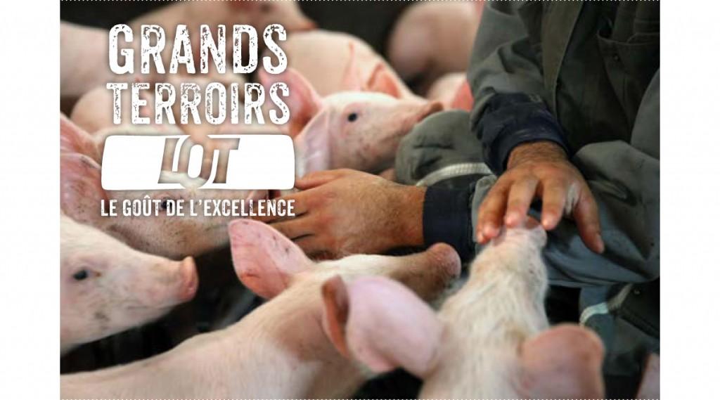 Comité de Promotion des Produits du Lot - filière Porc au grain du Sud-Ouest.