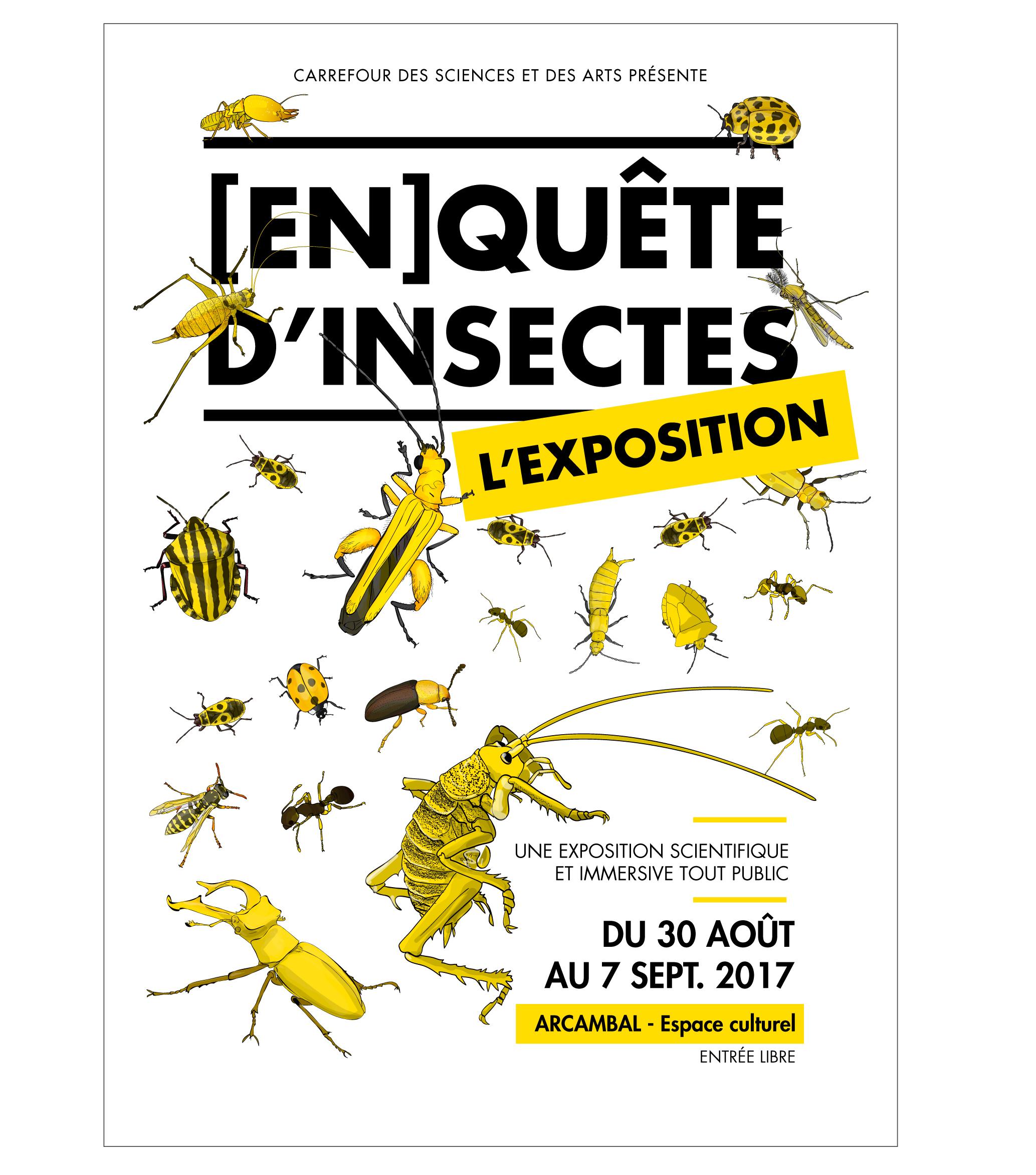 affiche de l'exposition [en]quête d'insectes