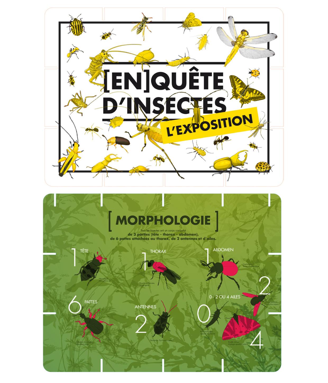 inauguration de l'expo [en]quête d'insectes