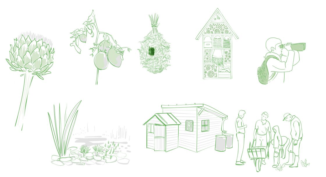 Illustrations - L'humain espèce invasive ?