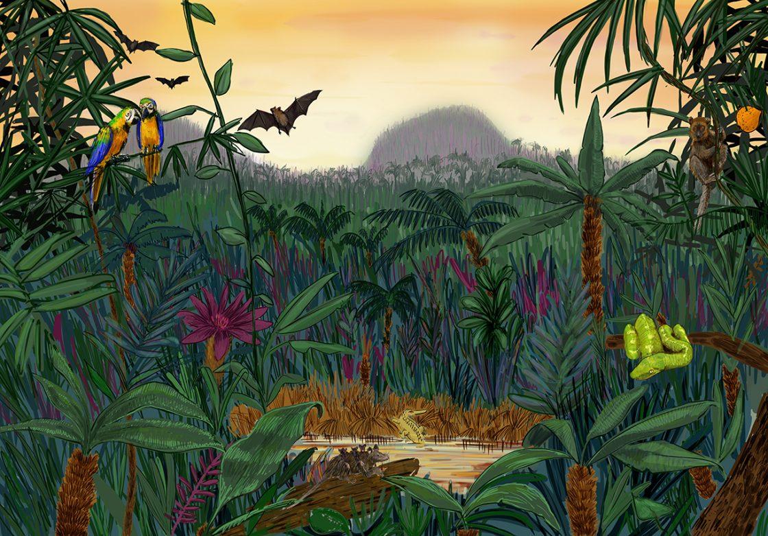 Éocène -56 à -36 millions d'années : Une forêt tropicale !