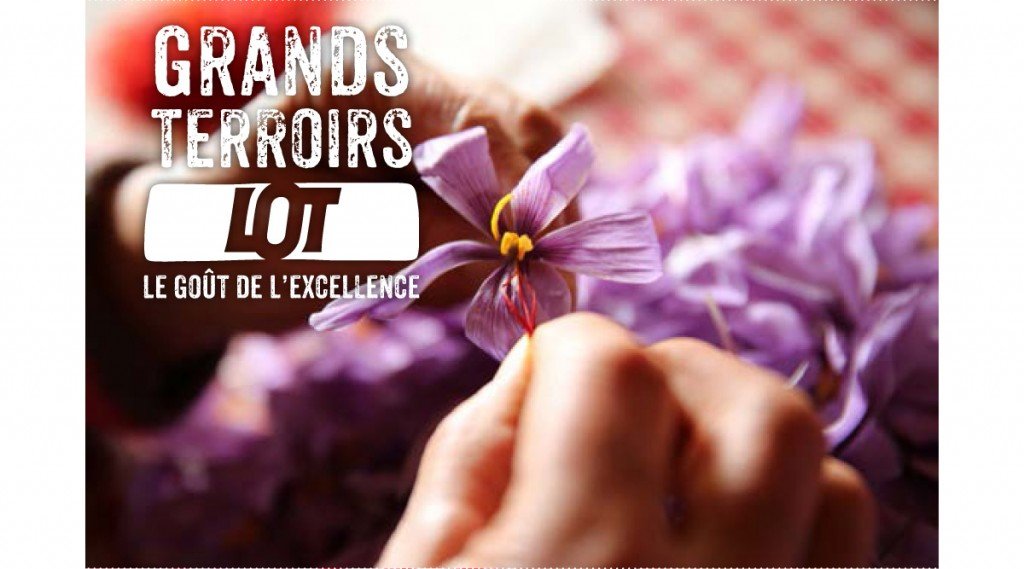 Comité de Promotion des Produits du Lot - filière du safran du Quercy.