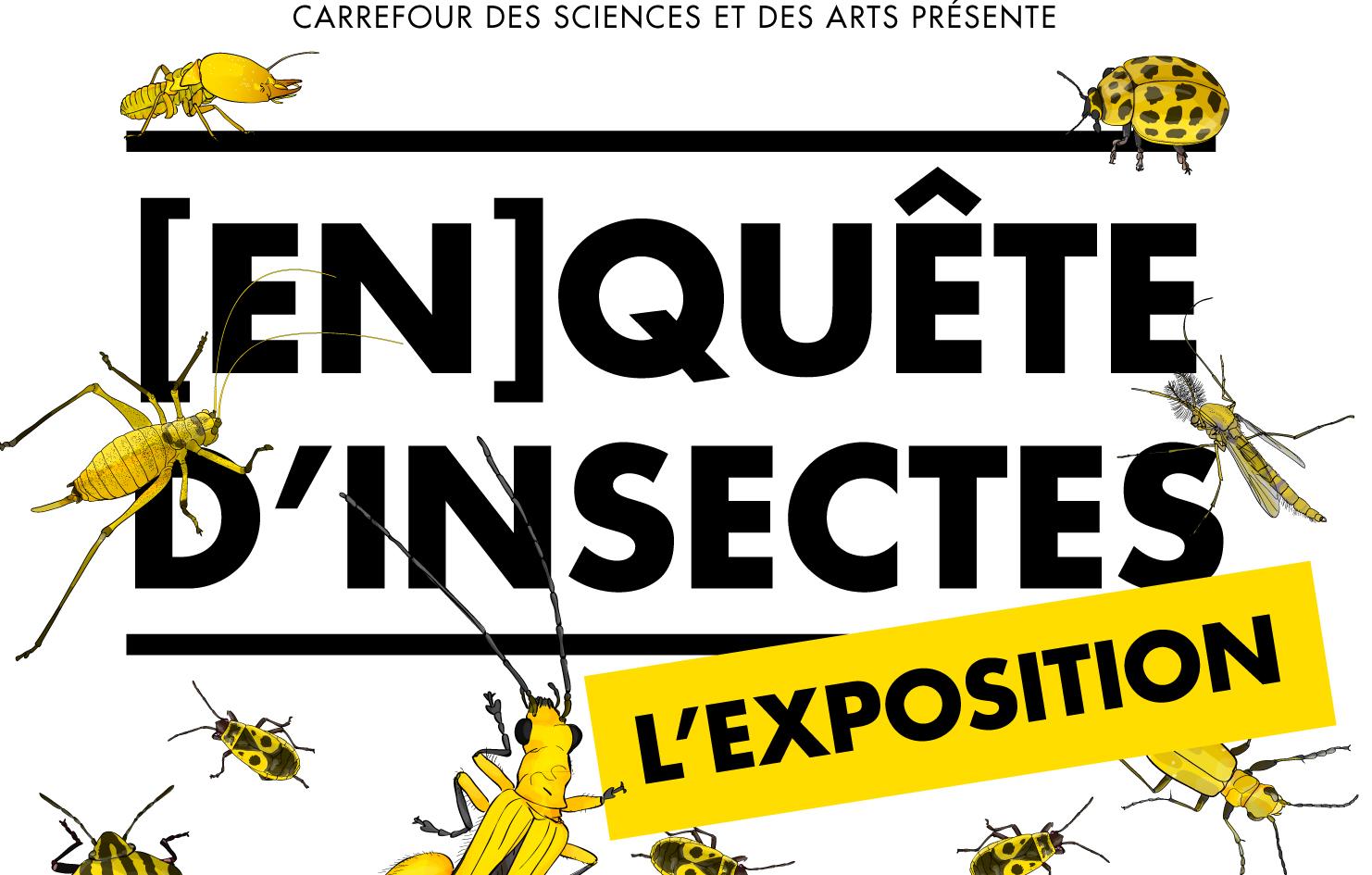 [En]quête d'insectes
