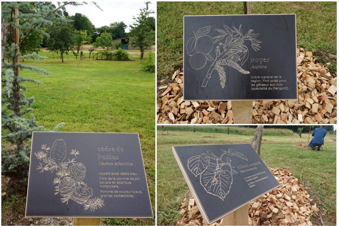 Parcours pédagogique Paprec Agro - cartel de présentation des essences d'arbres