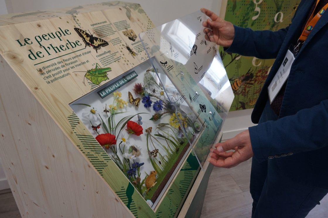 PAPREC AGRO - salle pédagogique - légendes des dioramas sur plexiglas