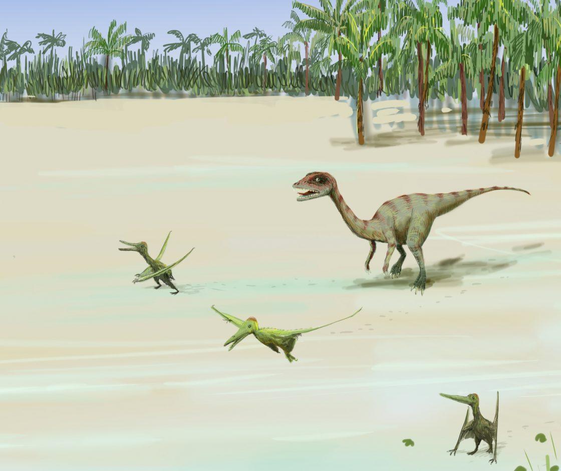 Jurassique envol de ptérosaures