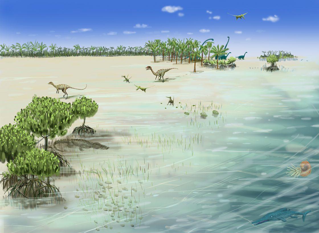 Jurassique : - 200 à - 140 millions d'années époque des lagons